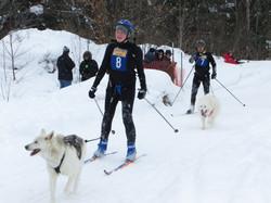 Winter Skijoring