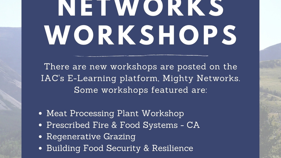 New Mighty Networks Workshops