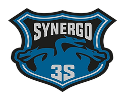 synergo 3S.png