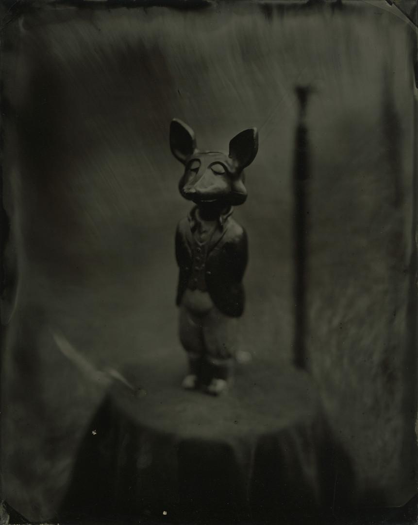 Original Fox Tintype