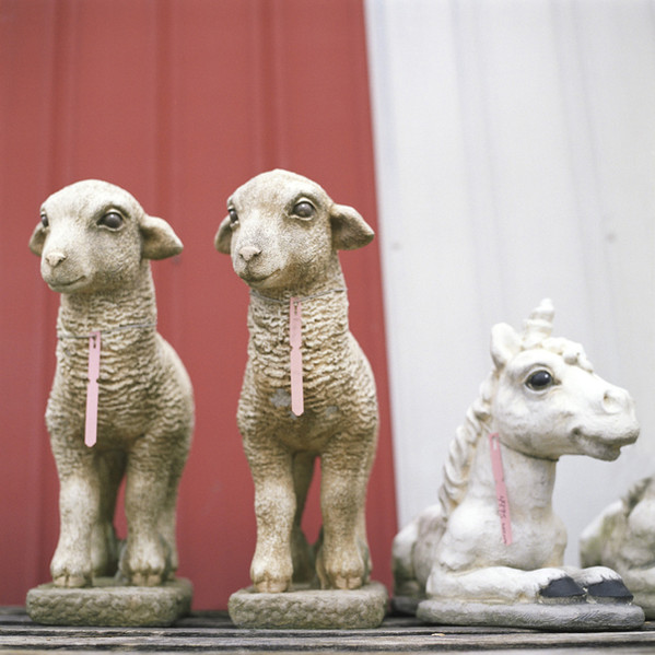 Sheep on Palette