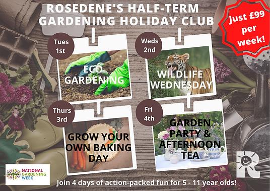 Rosedene's Half-term Holiday Club - all