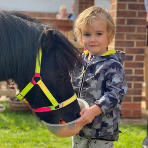 NEW NEIGH-BOUR BRINGS JOY TO NORTHALLERTON NURSERY!