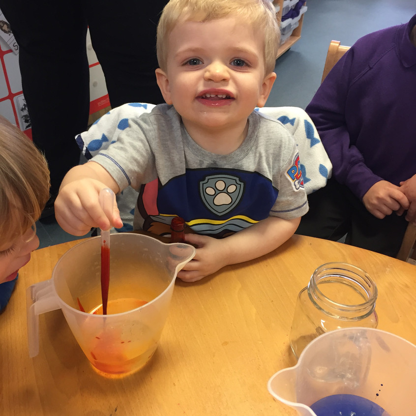 food colouring experiment (6)