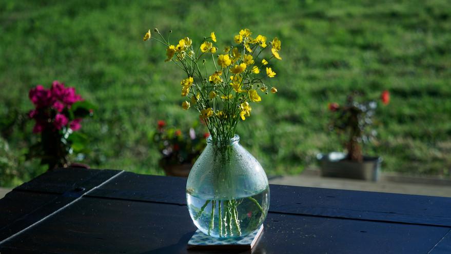 Fresh cut flowers on the deck