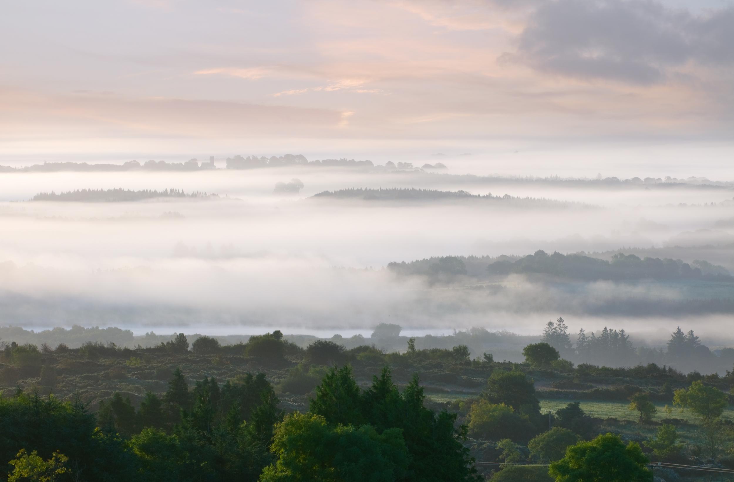 Autumn Morning Boyle.jpg