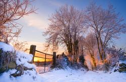 December Dawn - Boyle