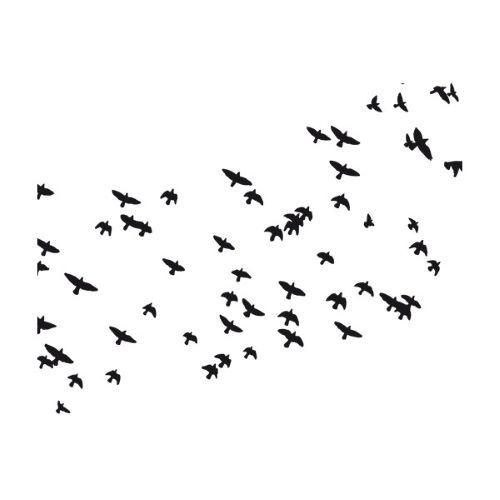 muurtattoos-dieren-vogels-muurtattoo-zwerm-vogels-ii.jpg