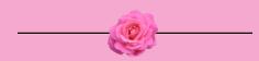 tea rose clip art.PNG
