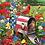 Thumbnail: BIRDS ON MAILBOX