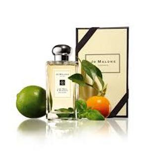 Lime, Basil & Mandarin Inspired