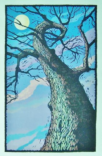 Morrison  Moonlit Oak.jpg