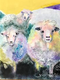 Three Fluffy Sheep