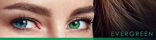 Evergreen BA Web 2021 V2.jpg