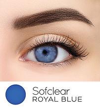 105 Royal Blue Enhance Web 2021 V1.jpg