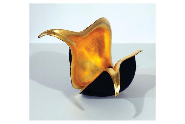 Golden Acacia.jpg