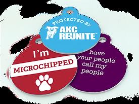 Reunite-Microchipped-Call-600px.png