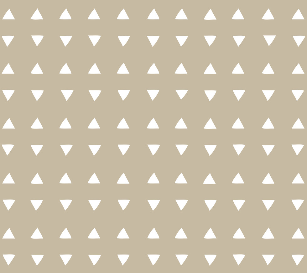 Tiny Triangles . Desert