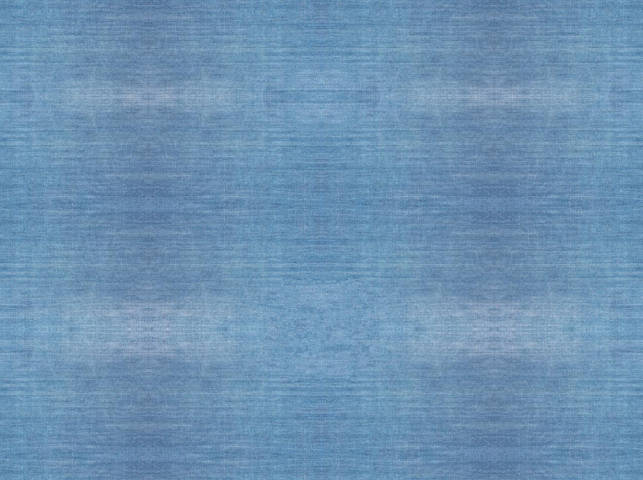 Denim . 501 Washed Blue . Solid