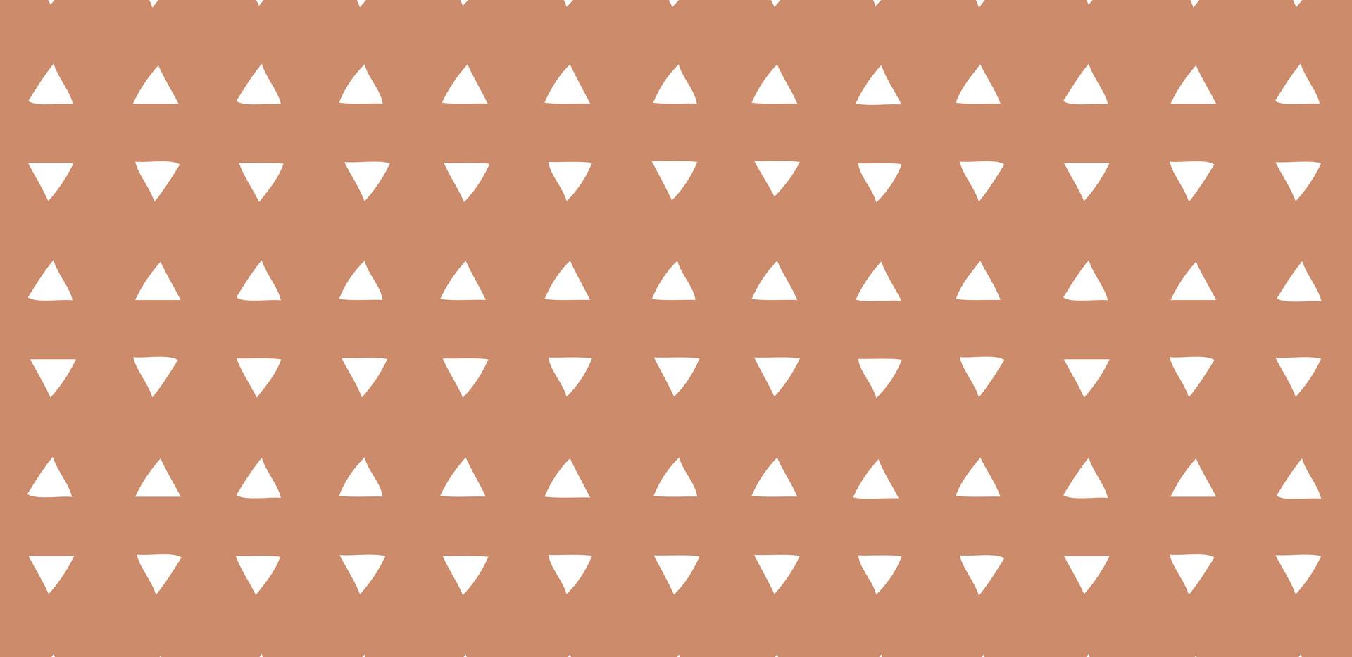 Tiny Triangles . Mesa