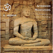 Afternoon Meditations Cover Final.jpg