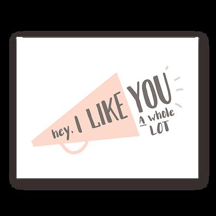 I Like You Megaphone Greeting Card