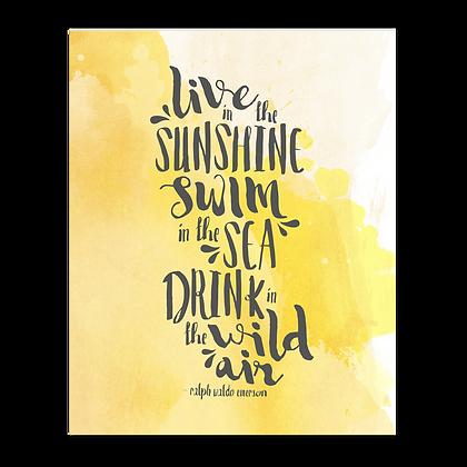 Live Swim Drink Art Print