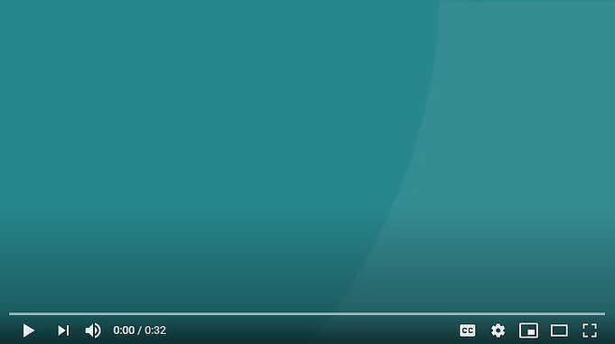 video screen capture.PNG