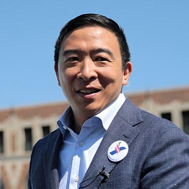 Andrew Yang (D)