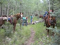 Equestrian-Access-Federal-Land-2009.jpg