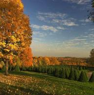 Raven Rocks   Beallsville, Ohio (1).jpg
