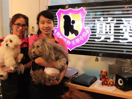 剪愛寵物美學中心與乘風少年學園合作 給弱勢青少年工作見習的機會 (NPOst)