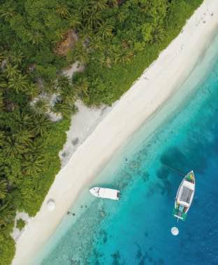 bahamas-481-thumb.png