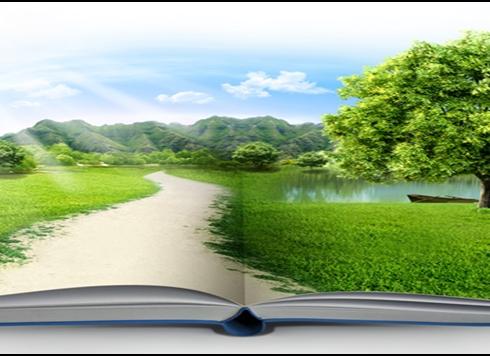 Educação e Crise Ambiental: Como reverter?