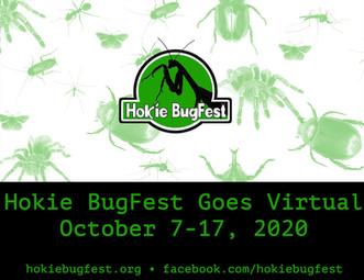 Hokie Bugfest