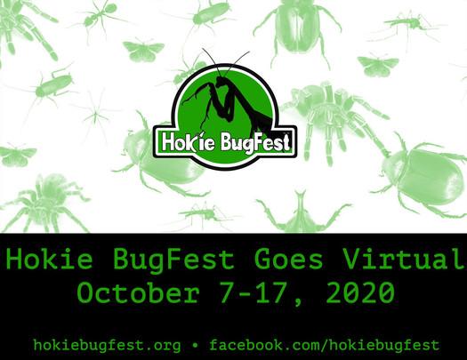 Hokie Bug Fest