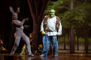 Donkey & Shrek