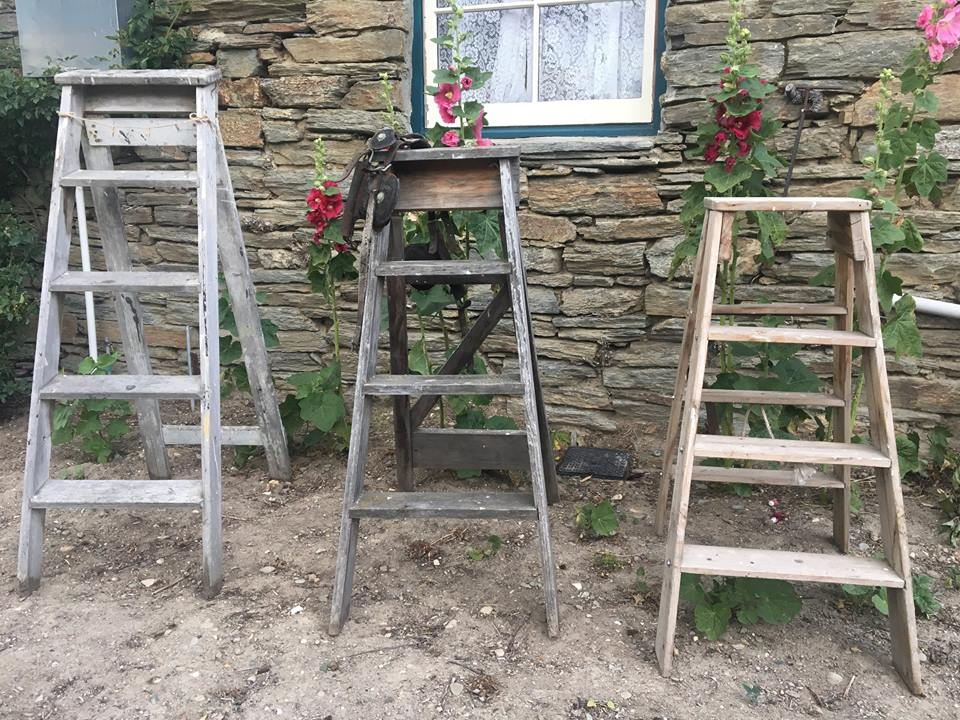 ladders $15