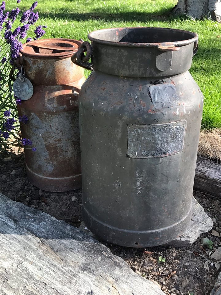 Milk cans $10