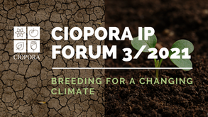 Booking Closed! CIOPORA IP Forum: Breeding for a Changing Climate