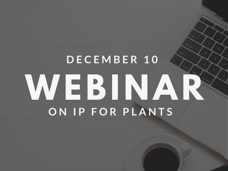 Webinar on IP Protection in the Green Value Chain