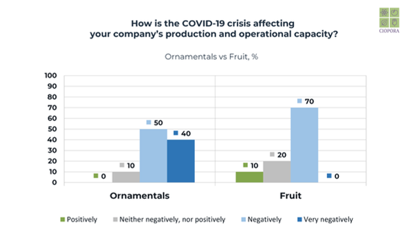 Production & operational capacity