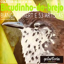 Exposição Bicudinho-do-brejo em prol da Reserva Bicudinho-do-brejo