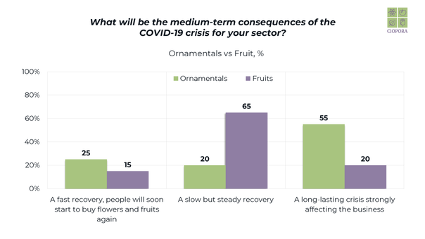 COVID-19 Survey Results_Seite_26.png