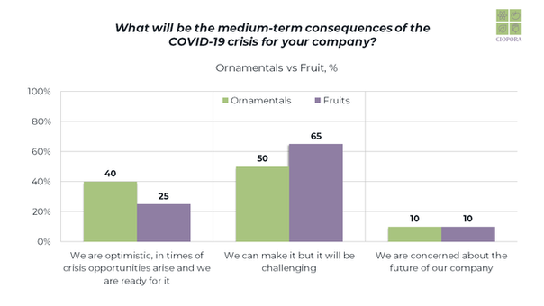COVID-19 Survey Results_Seite_27.png