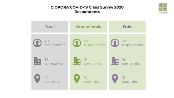 CIOPORA COVID-19 Survey Respondents