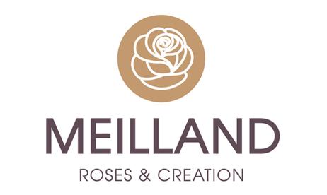 Meilland.png