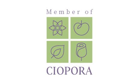 Member_of_CIOPORA.png
