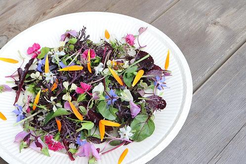 フラワーガーデンサラダ/Flower Garden Salad