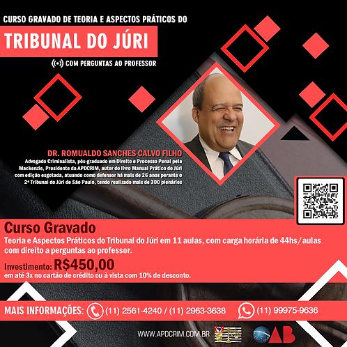 Curso Gravado de Teoria e Aspectos Práticos do Tribunal do Júri